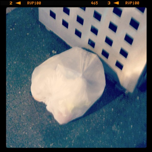 Day 17 - you can always find a bag left outside a rubbish bin; the detritus of urban life