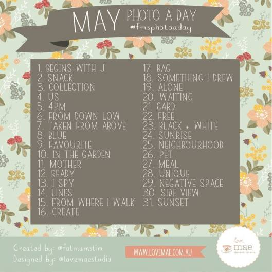 Photo a Day guidelines - by Fat Mum Slim