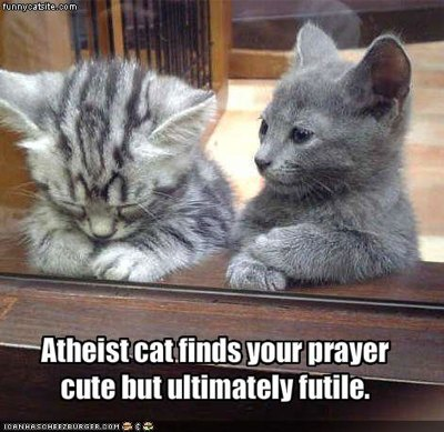 Atheist Cat - pic by Cheezburger
